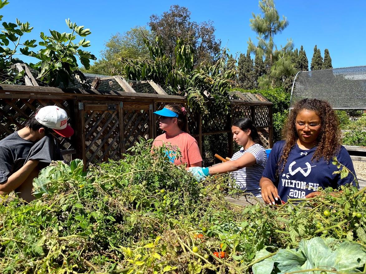 German-School-campus-Newport-Beach-Honor-Society-Students-Project-7